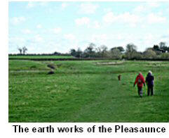 Pleasaunce Earth Works