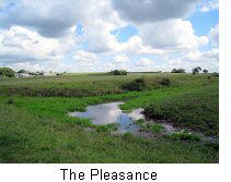 The Pleasance